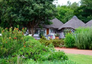 sudafrica-pretoria-il-giardino-botanico-nazionale-di-pretoria