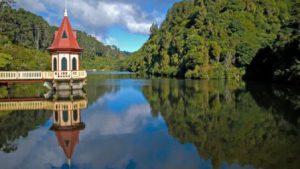 nuova-zelanda-wellington-il-santuario-naturale-di-karori-di-wellington