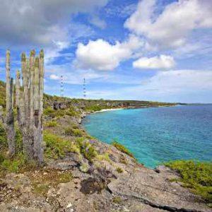 Bonaire Kralendijk Il Parco Marino Nazionale Bonaire