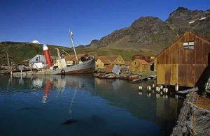 Georgia del Sud Grytviken La Stazione della Caccia alle Ballene di Grytviken