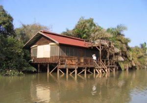 Gambia Banjul River Gambia National Park
