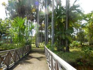 Guyana Francese Caienna I Giardini Botanici di Caienna