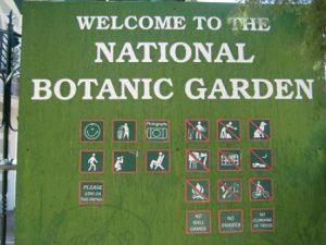 Namibia Windhoek Il Giardino Nazionale Botanico di Namibia