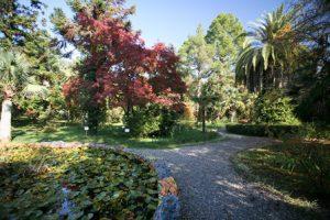 abcasia-sukhumi-il-giardino-botanico-di-sukhumi