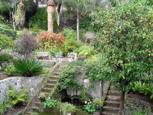 gibilterra-i-giardini-botanici-di-gibilterra