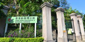 hong-kong-i-giardini-zoologici-e-botanici-di-hong-kong