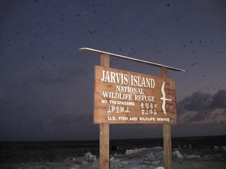 Cosa vedere e fare all'Isola Jarvis