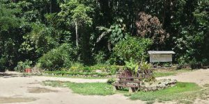 isole-salomone-honiara-i-giardini-botanici-di-honiara