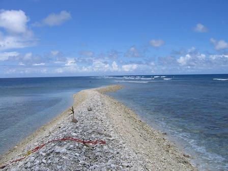Cosa vedere e fare a Kingman Reef