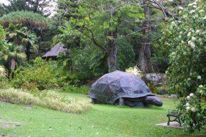 Seychelles Victoria I Giardini Botanici Nazionali delle Seychelles