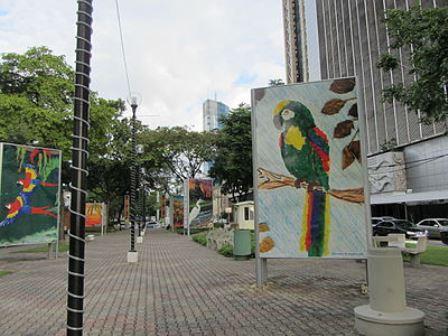 Cosa vedere e fare a Port of Spain