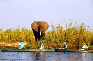 zambia-lusaka-il-parco-nazionale-lower-zambezi-di-lusaka