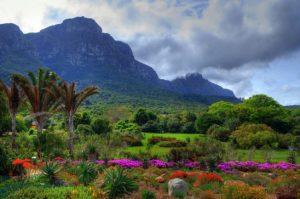 zimbabwe-harare-i-giardini-nazionali-botanici-di-harare
