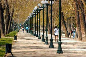 cile-santiago-del-cile-il-parque-forestal-di-santiago
