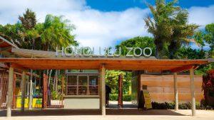 hawaii-honolulu-lo-zoo-di-honolulu