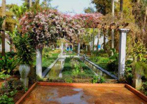 marocco-rabat-i-giardini-esotici-di-rabat