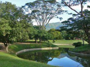 venezuela-caracas-il-parque-del-este-di-caracas