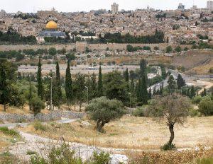 israele-gerusalemme-il-monte-degli-ulivi-di-gerusalemme