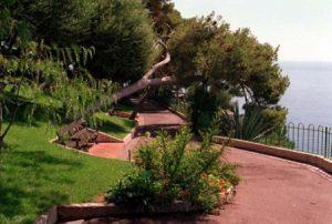 monaco-i-giardini-di-san-martin-di-monaco