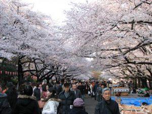 giappone-tokyo-parco-di-ueno
