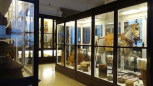 vietnam-hanoi-il-museo-di-etnologia